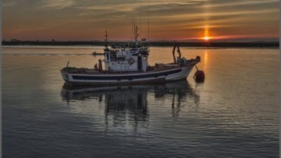 Израиль перехватил судно с активистами на пути в сектор Газа