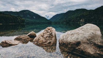 Фермер любовался огромными валунами на берегу реки. Но оказалось ― это не камни!