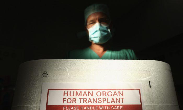 Врач стоит над пустой коробкой из пенополистирола, используемой для транспортировки человеческих органов в рамках медиа-мероприятия в операционной клиники Vivantes Neukoelln 28 сентября 2012 года в Берлине, Германия. (Шон Гэллап / Getty Images) | Epoch Times Россия