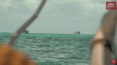 Китайские рыболовы уничтожают морскую фауну в водах других стран