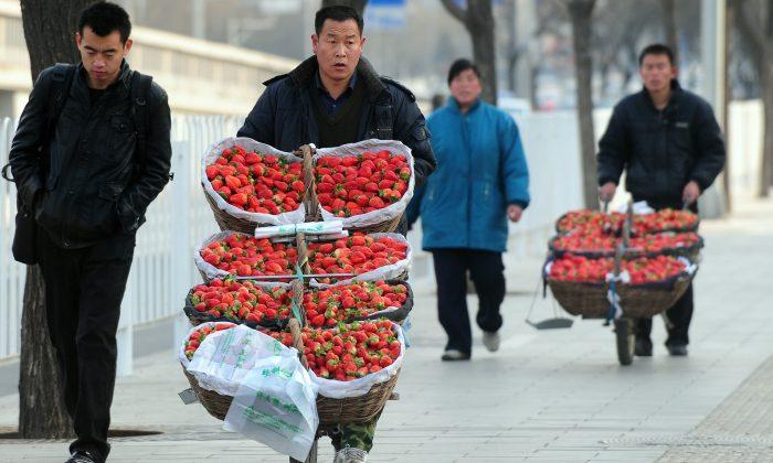 Фермеры продают клубнику с тележек, которые катят по улице Пекина 2 февраля 2010 г. (Frederic J. Brown / AFP / Getty Images)   Epoch Times Россия
