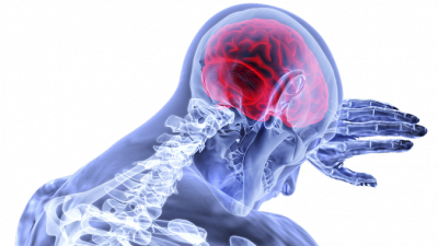 Популярный антидепрессант изменяет объём мозга