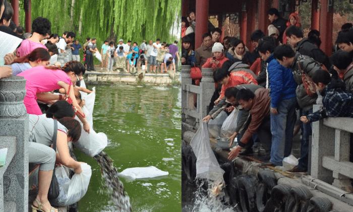 Жители Китая выпускают пойманную рыбу в озеро Дамин. (Sina Weibo)   Epoch Times Россия