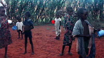 ООН: Каждый девятый житель планеты страдает от голода