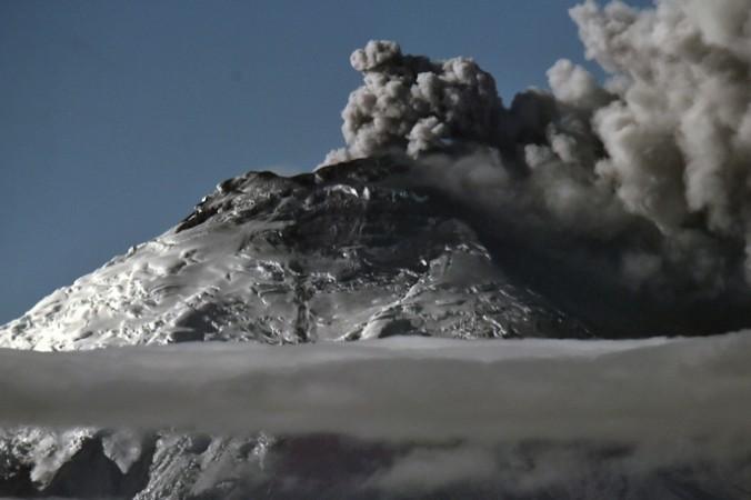 GettyImages 491984442 676x450 1 - Учёные спасают вымирающих лягушек от вулкана Котопахи