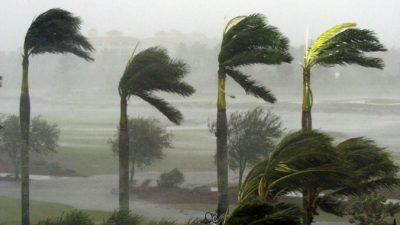 На востоке Китая прошёл самый сильный за 50 лет ураган. Около тысячи пострадавших