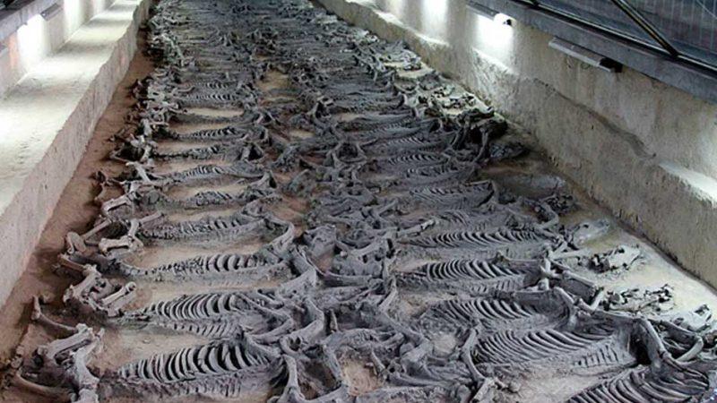 ancient-origins.net/news-history   Epoch Times Россия