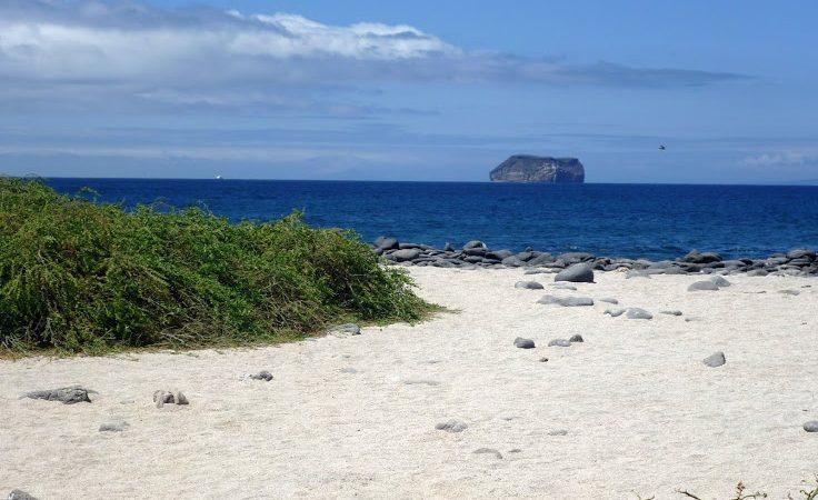 Галапагосские острова. Пляж на острове Симор-Норте с видом на остров Дафне. David Adam Kess/ wikipedia.org/CC BY-SA 3.0 | Epoch Times Россия