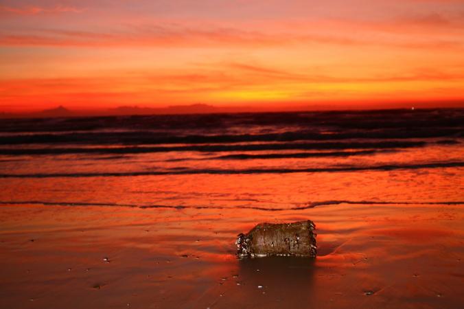 ocean 4920791 1280 676x450 3 - Учёные Австралии нашли способ очистки океана от ртути