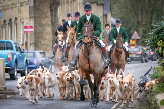 27 декабря: охотники и гончие псы в День подарков на городской площади в городе Оксфордшир, Англия. Охота на лис была официально запрещена в Англии в 2004 году, но, несмотря на это, традиционно 26 декабря устраивается сбор охотников и парад, который заканчивается большой бескровной верховой охотой с собаками. Фото: Matt Cardy/Getty Images | Epoch Times Россия