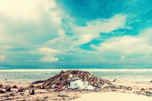 Учёные выяснили, куда деваются пластиковые отходы из океана