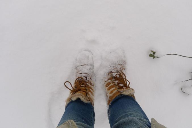 Прошедшая зима была самой тёплой в истории