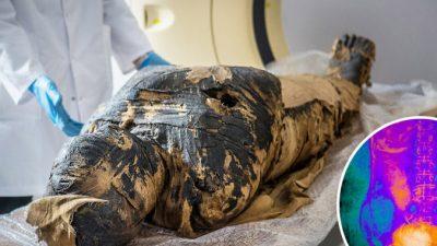 Древнеегипетская мумия жреца оказалась мумией беременной женщины
