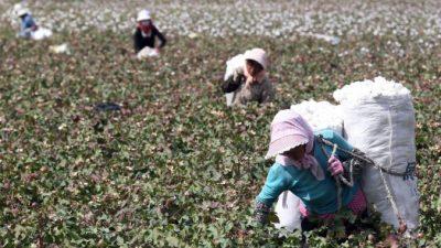 Запрет на товары, изготовленные с помощью принудительного труда, замедлил импорт одежды в США