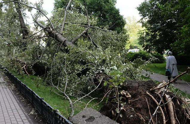 4697364422 2251eee12c z - Саратовская область пострадала от урагана