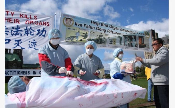 7 glavnoe 4 676x420 1 - Правозащитники призвали канадских депутатов объявить преступным принудительное извлечение органов в Китае