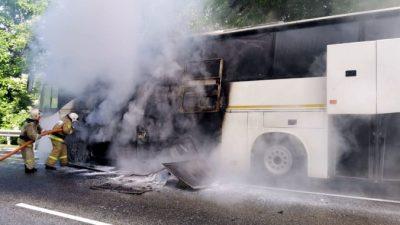 15 детей пострадали при столкновении автобусов в Краснодарском крае
