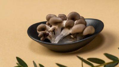 Ешьте эти грибы, чтобы жить дольше