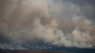 В Британской Колумбии эвакуируют людей из-за быстрого распространения природных пожаров