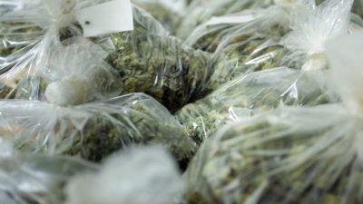 Китайцы в США выращивают в домах и продают марихуану, отмывая деньги через приложения соцсетей