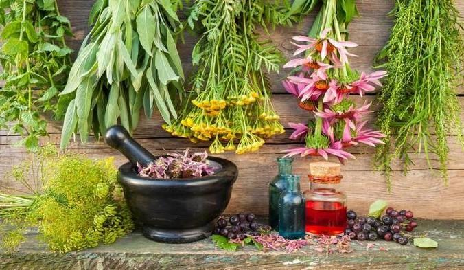 Лечебные травы. Фото: sovetnika.net   Epoch Times Россия
