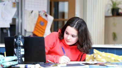 В Великобритании на 75% увеличилось число детей на домашнем обучении