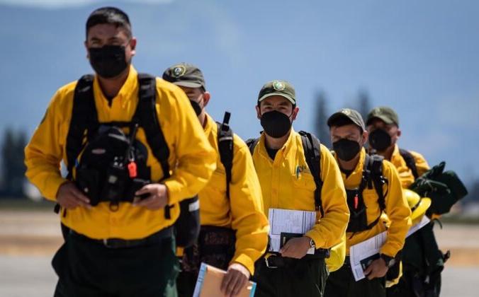 В Британской Колумбии продолжают бушевать более 250 лесных пожаров