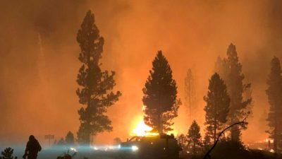 Десятки домов уничтожены огнём в штате Орегон США, эвакуировались 3 тыс. человек
