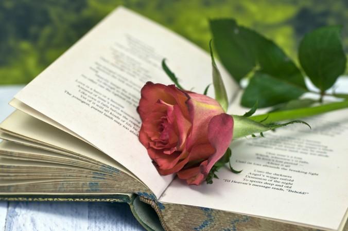 «О, моя любимая ― как красная, красная роза», ― шотландский поэт Робби Бернс (Грэм Доус). | Epoch Times Россия
