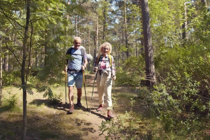 Couple hiking through the woods 1200x675 1 676x450 1 - Тренировки в походах полезны для тела и ума