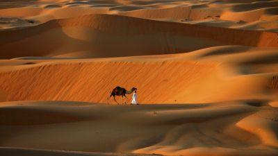 В ОАЭ вызвали искусственный дождь в 50-градусную жару