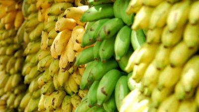 Цены на бананы выросли до пятилетнего максимума