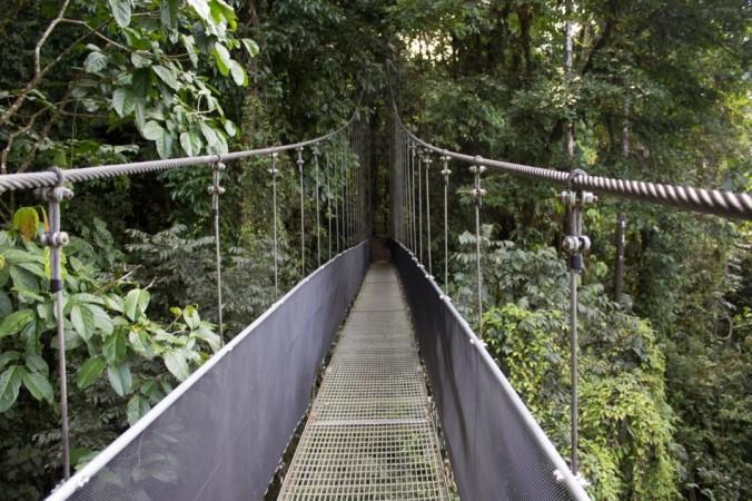 bridge 2124896 1280 e1548375202322 676x450 1 - В путешествиях относитесь к природе бережно