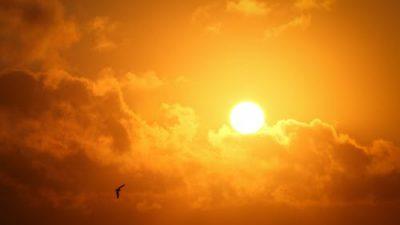 Солнечный срок в китайской медицине