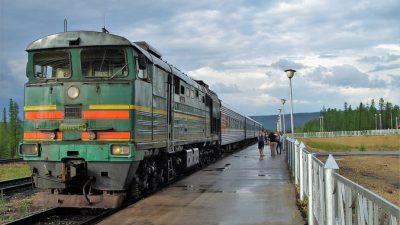 20 детей госпитализировали с поезда Мурманск-Адлер  с подозрением на кишечную инфекцию