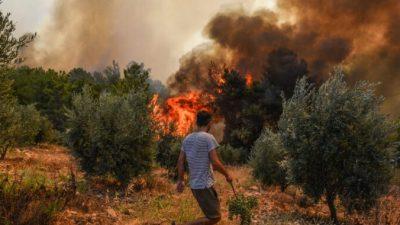 В Турции не прекращаются лесные пожары. Туристов эвакуируют морем