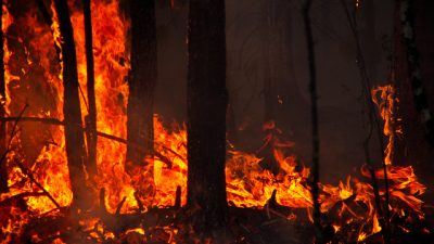 В Якутии лесной пожар подступает к крупнейшей нефтебазе (Видео)