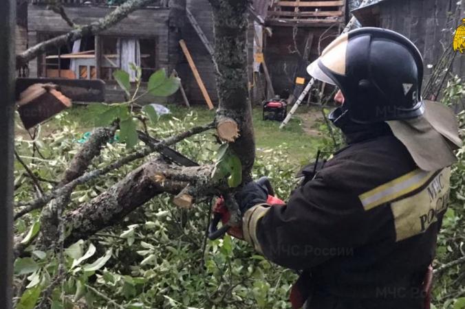 От урагана в Тверской области погибли двое взрослых и маленький ребёнок