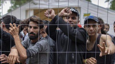 ЕС ведёт переговоры о незаконных иммигрантах и обвиняет Беларусь в «гибридной войне»