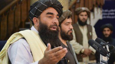 Первая пресс-конференция талибов: «Давайте сформируем инклюзивное правительство»