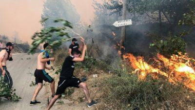 Число погибших в алжирских лесных пожарах увеличилось до 65, включая 28 солдат, в стране объявлен траур