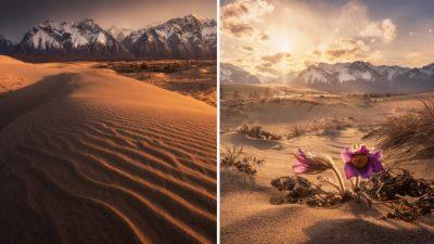 Крохотная сибирская пустыня Пески Чары среди ледников, озёр, лесов