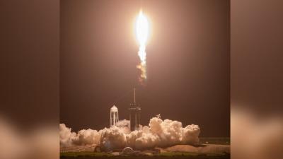 SpaceX отправила муравьёв, авокадо иробота наМКС