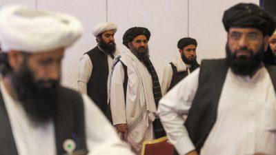 Для управления Афганистаном талибы выберут 12 человек