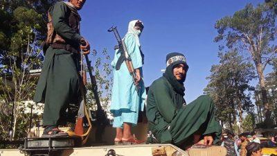МИД России сообщило об отношениях с «Талибаном»