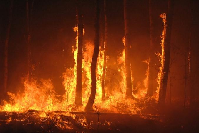 Дым от лесных пожаров меняется, когда он висит в воздухе, его химические свойства меняются из-за воздействия солнца и химических веществ в воздухе. (Евгений Дубинчук / Shutterstock)   Epoch Times Россия