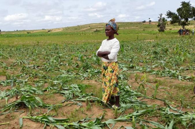 Каненг Ишая стоит на своей разграбленной кукурузной ферме. (Masara Kim/The Epoch Times) | Epoch Times Россия