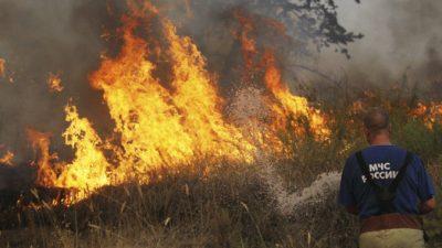 В России горят более 800 тысяч гектаров леса