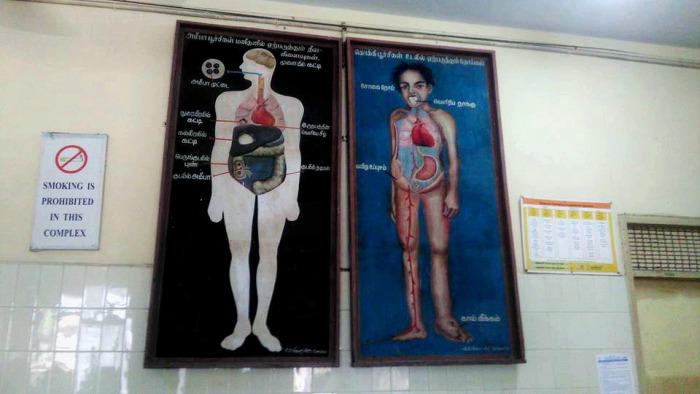 Вакцинация по-индийски