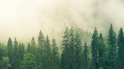 Столицу Бурятии затянуло дымом от пожаров в Якутии